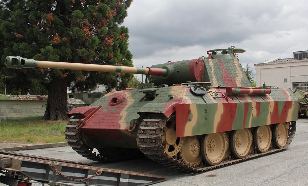 黑豹003