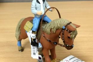 PAPO Young Rider und sein Pferd