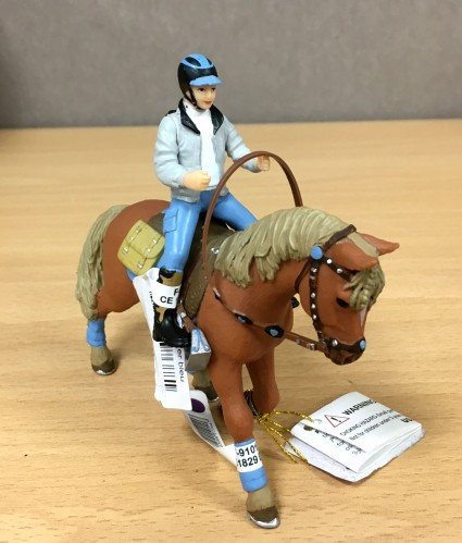PAPO Young Rider and his Horse