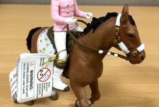 PAPO Winterreiterin und ihr Pferd