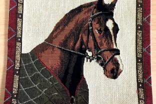Mini cushion cover 22X22 cm Horse 1
