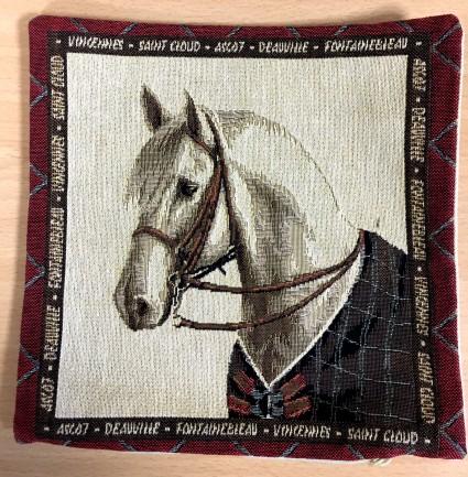 Mini Kissenbezug 22X22 cm Pferd 3
