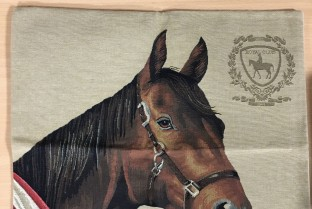 Cushion cover 45X45cm Horse 4